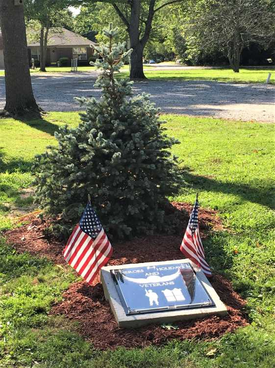 Tree will honor veterans at Forest Park