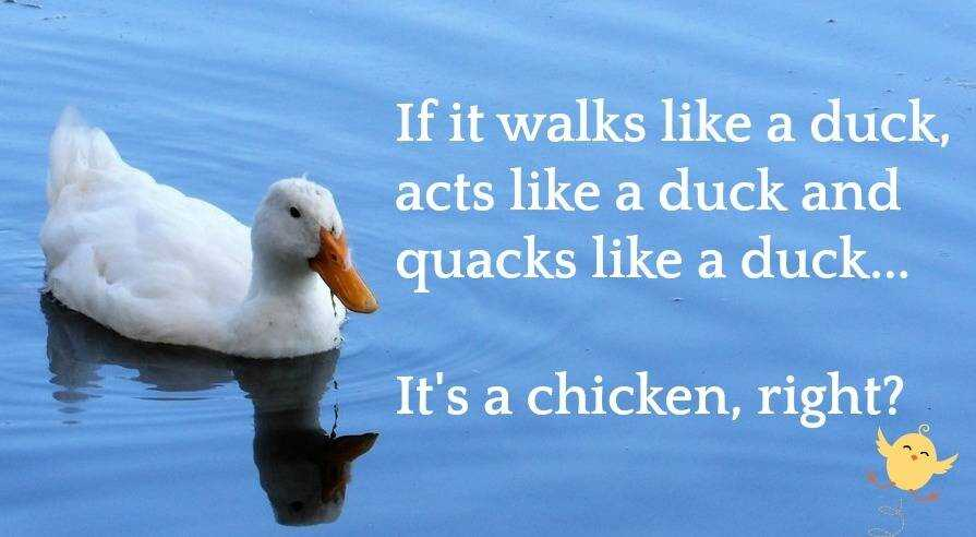 Image of Duck Typing Quote
